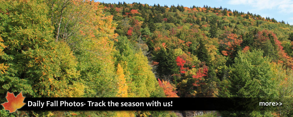 Daily fall photos and autumn color updates for following the leaf season in Blowing Rock and the NC High Country.
