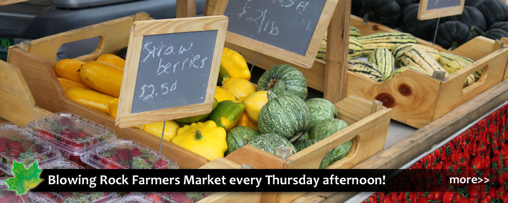 Farmers market in Blowing Rock with fresh local foods, vegetables, products, baked goods.