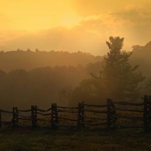 parkway_sunrise_toddbush-300x300