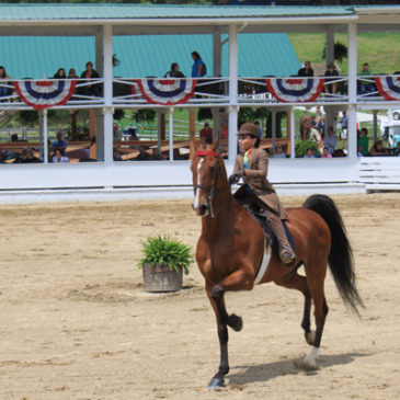 Blowing Rock Horse Show Awarded Heritage Competition Designation
