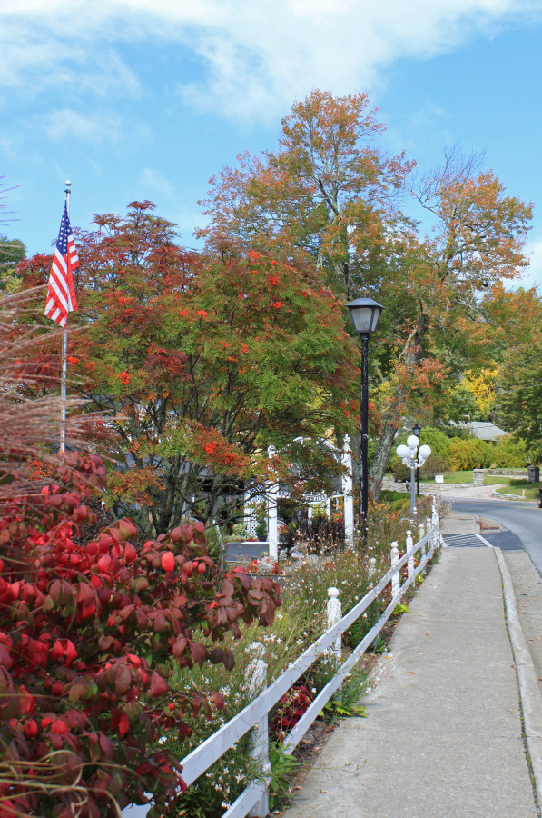 Early fall color in Blowing Rock 2015