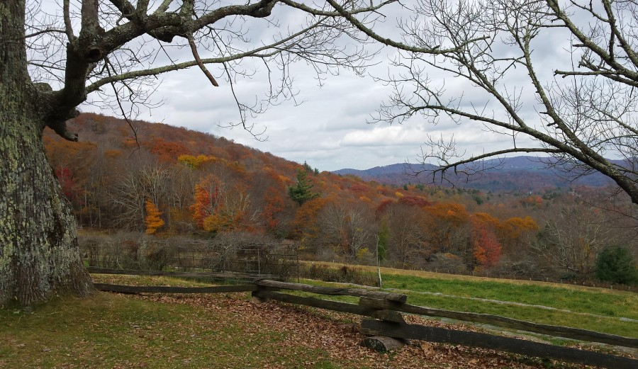 fall view from Cone Estate