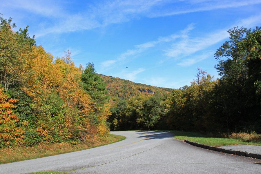 Fall color on the Blue Ridge Parkway near Blowing ROck NC