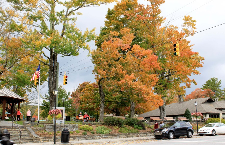 2015 fall color in Blowing Rock NC