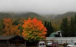 Vibrant fall color near Seven Devils, NC