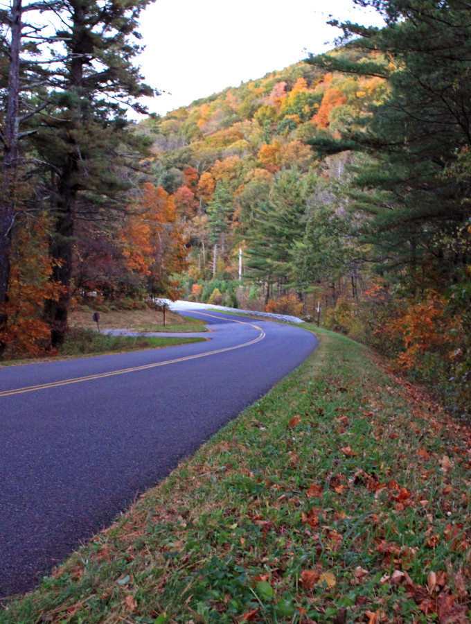 fall drive in Blowing Rock nc