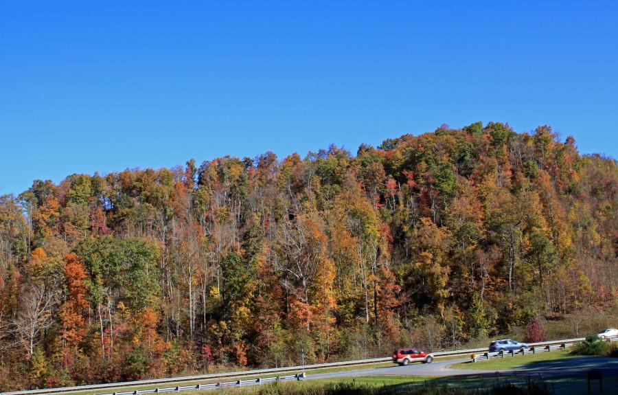 Boone NC in Fall