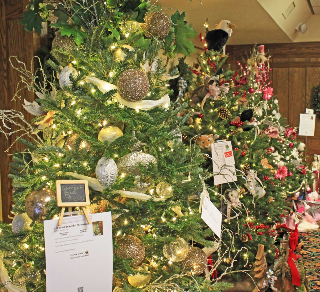 Christmas trees at WYN fundraiser