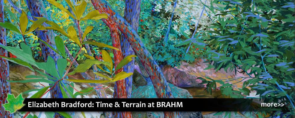 Elizabeth Bradford: Time + Terrain at Blowing Rock Art & History Museum