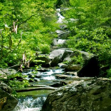 Waterfalls Near Blowing Rock