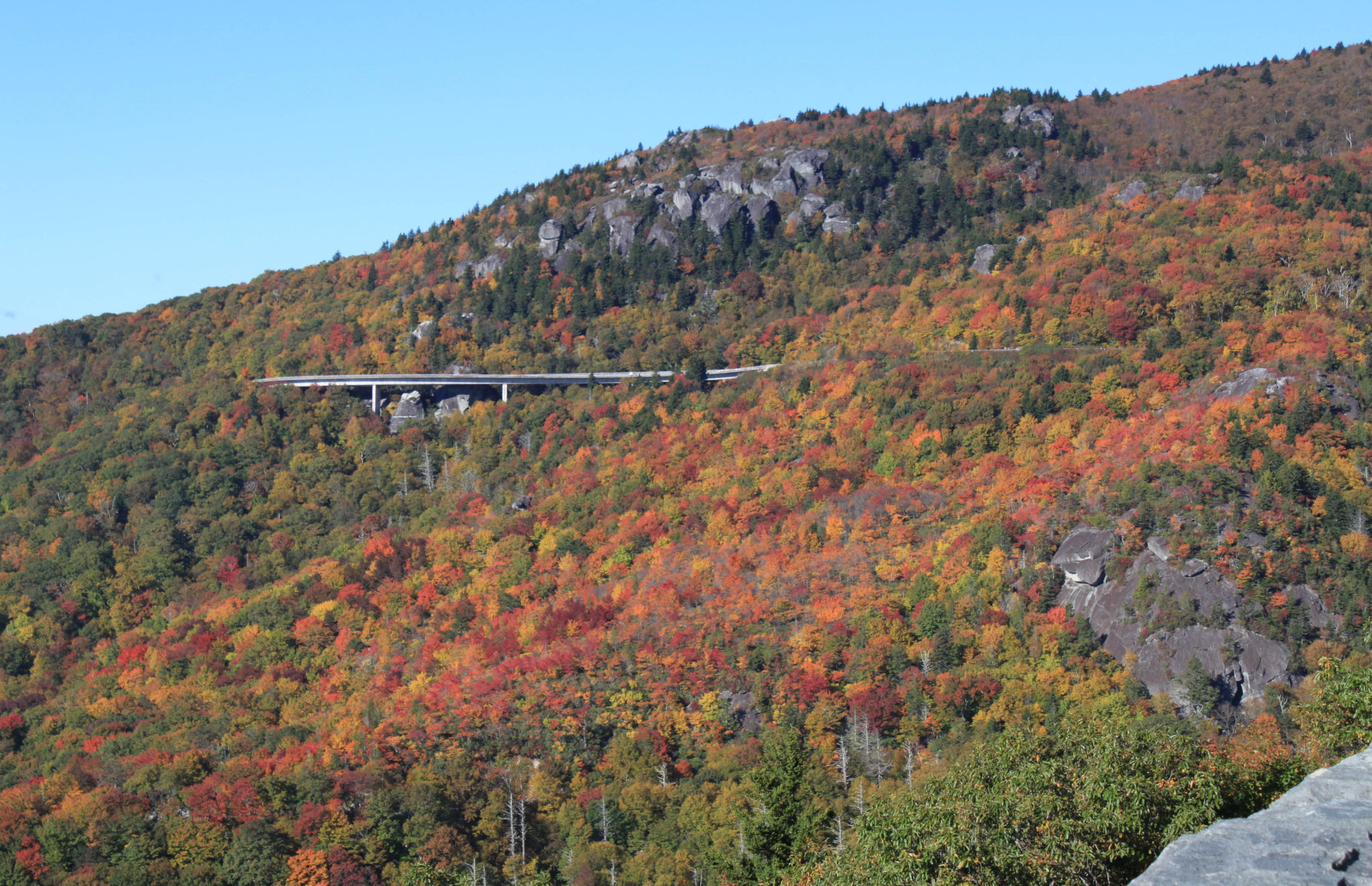 fall color at the linn cove viaduct on the blue ridge parkway