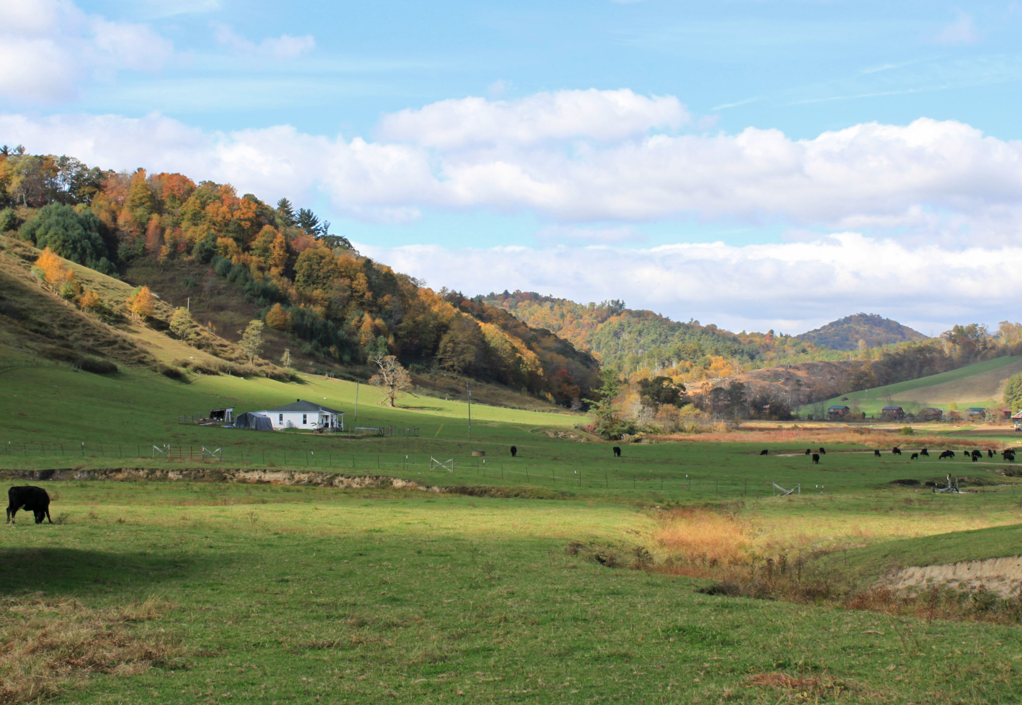 fall highland pasture view