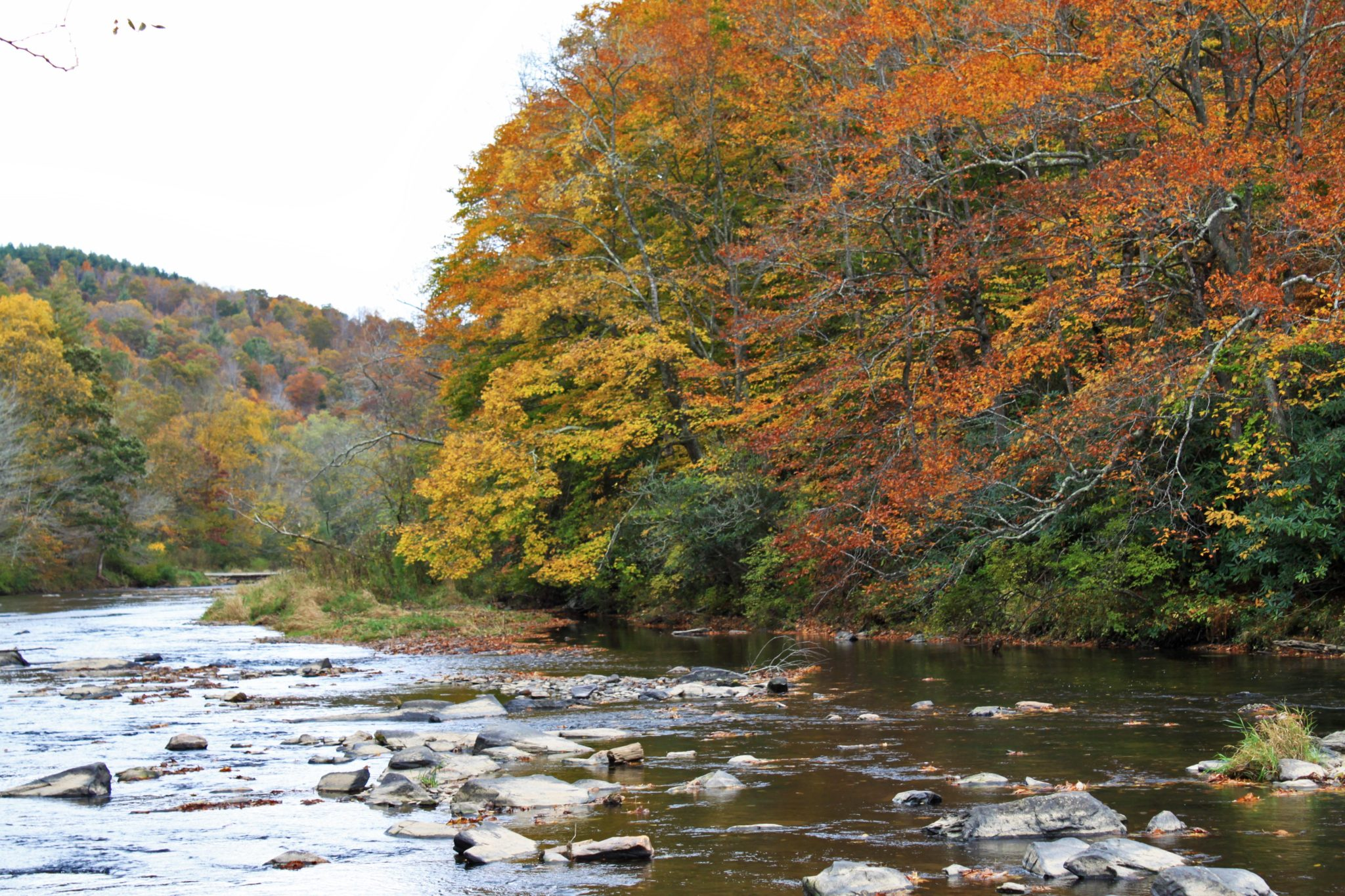 New River fall color