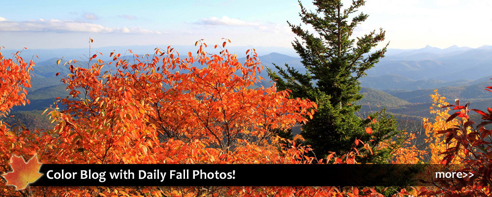 fall foliage and autumn color views in blowing rock in the blue ridge mountains of nc