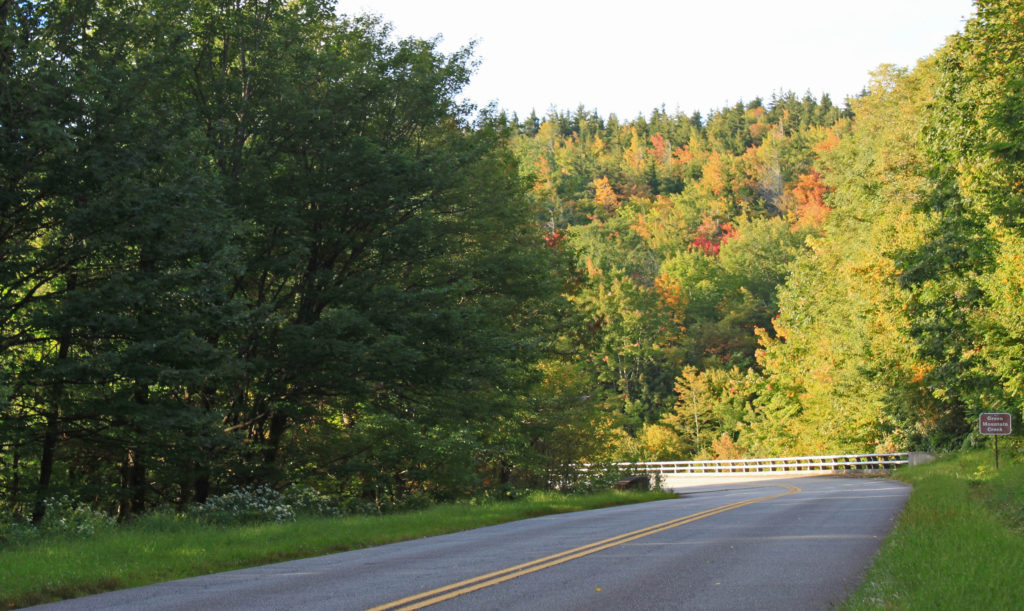 fall color near blowing rock nc on Blue Ridge Parkway