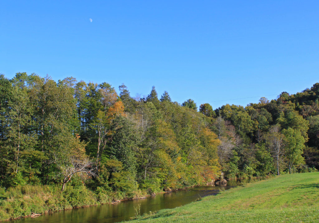 start of fall color on New River