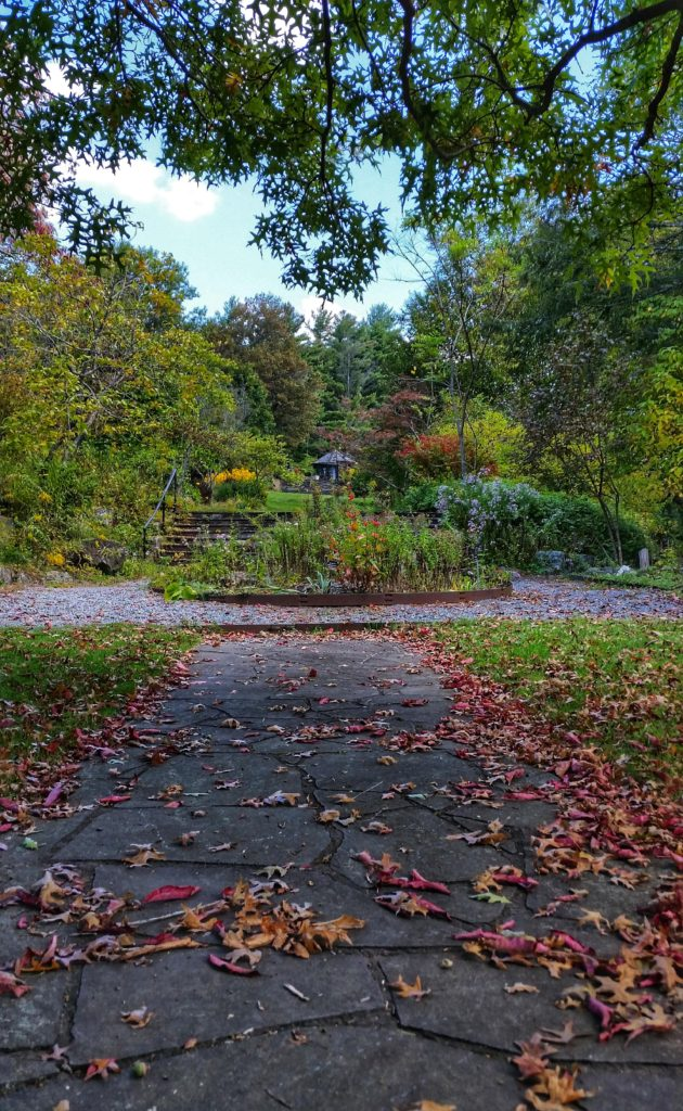 Daniel Boone Gardens in the fall