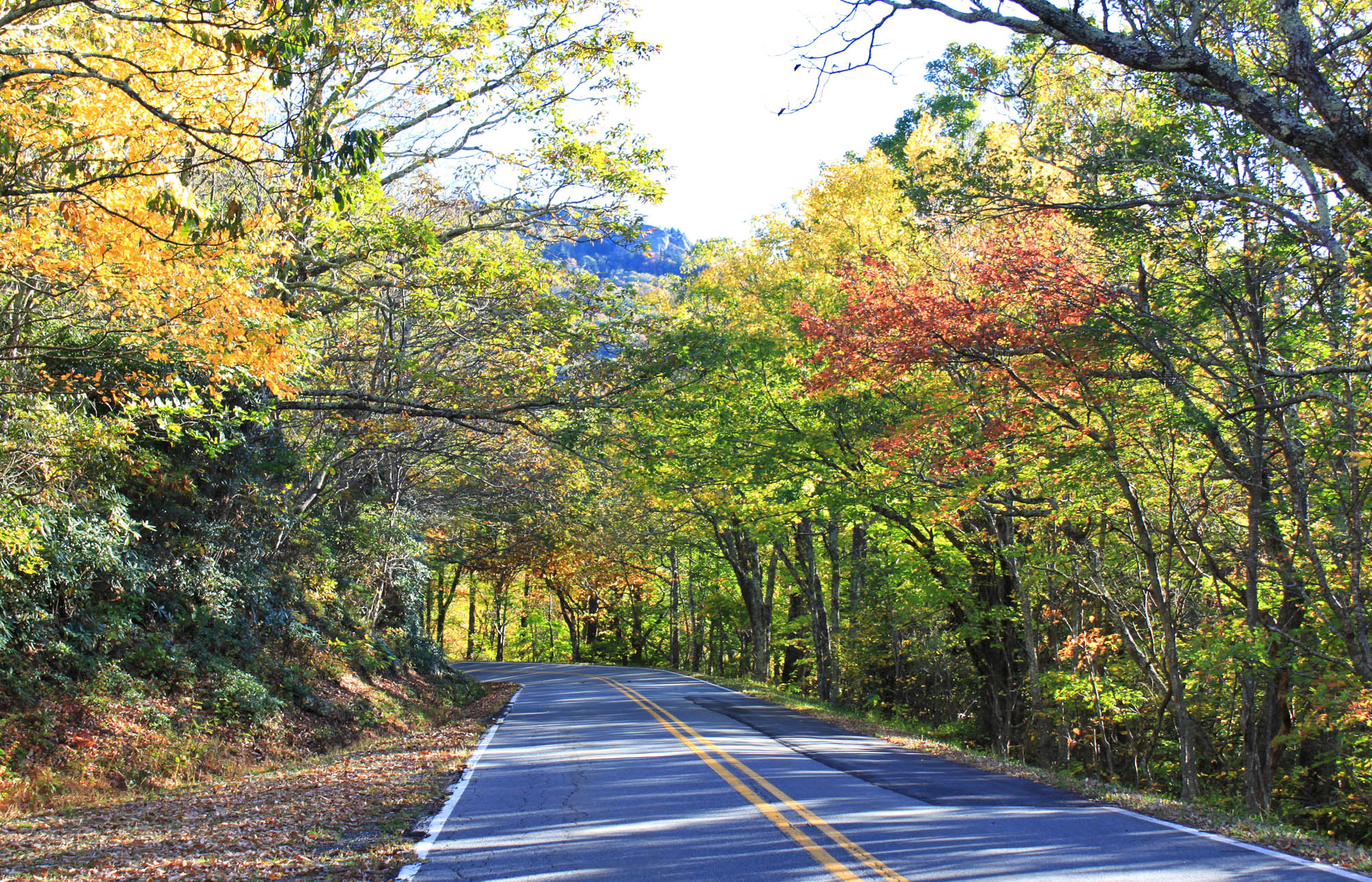 Highway 221 in Blowing Rock NC with fall foliage
