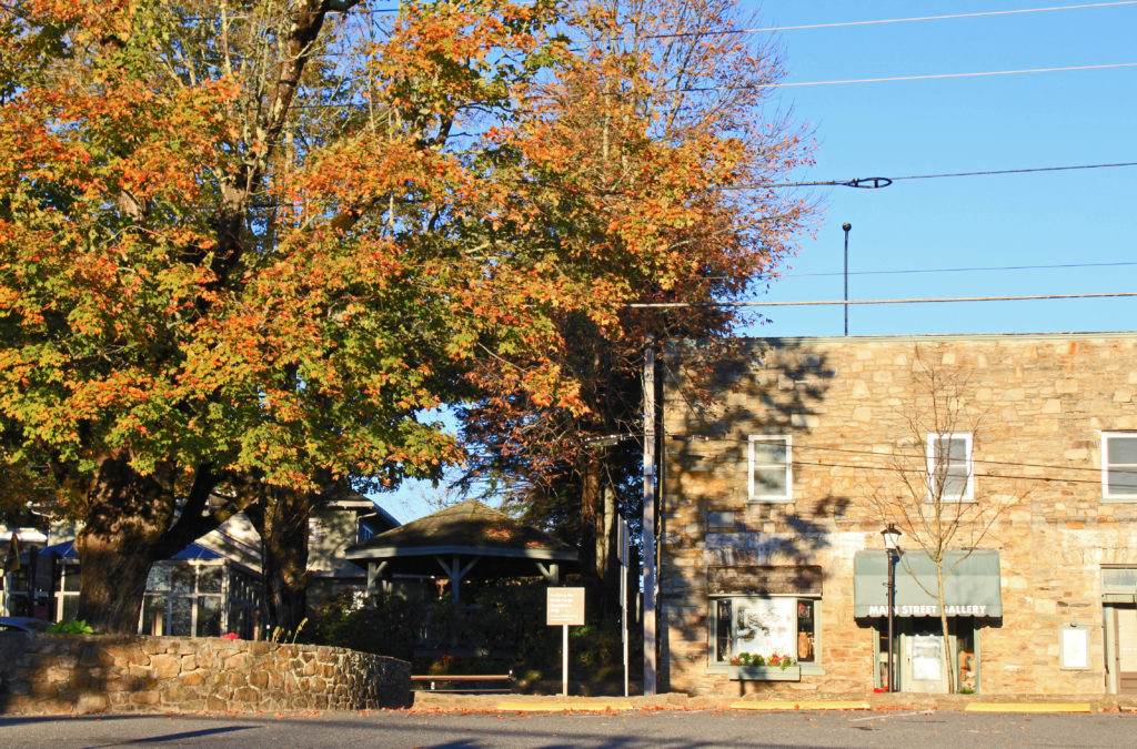 maples on main street in the fall in blowing rock nc
