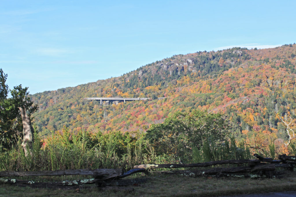 Fall view of the Linn Cove Viaduct on the Blue Ridge Parkway