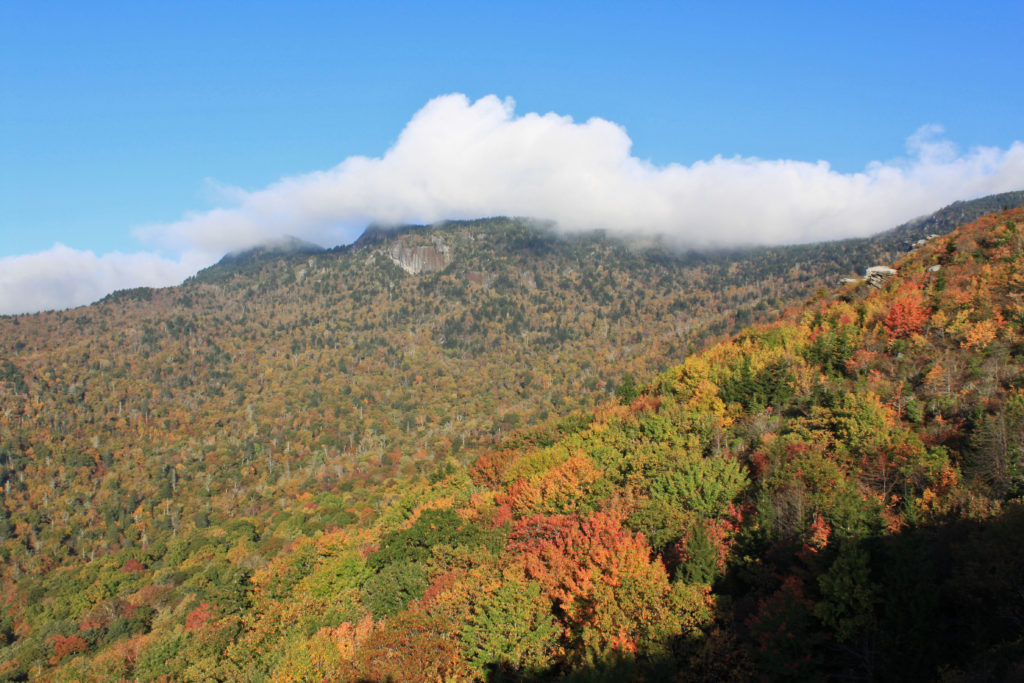 Fall Color at Rough Ridge on the Blue Ridge Parkway