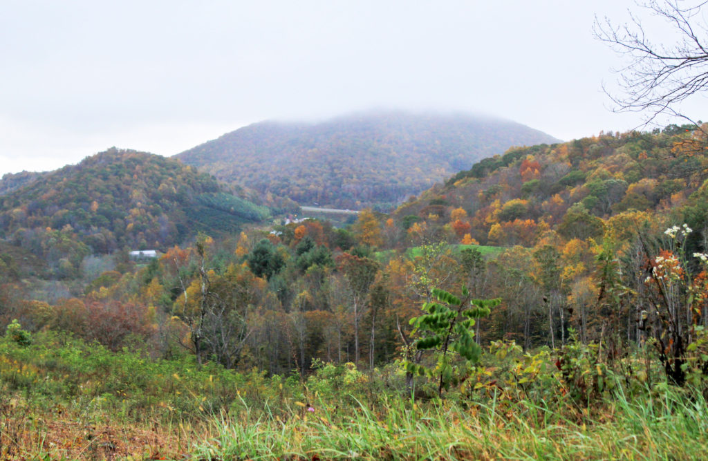 fall color near blowing rock in Boone nc
