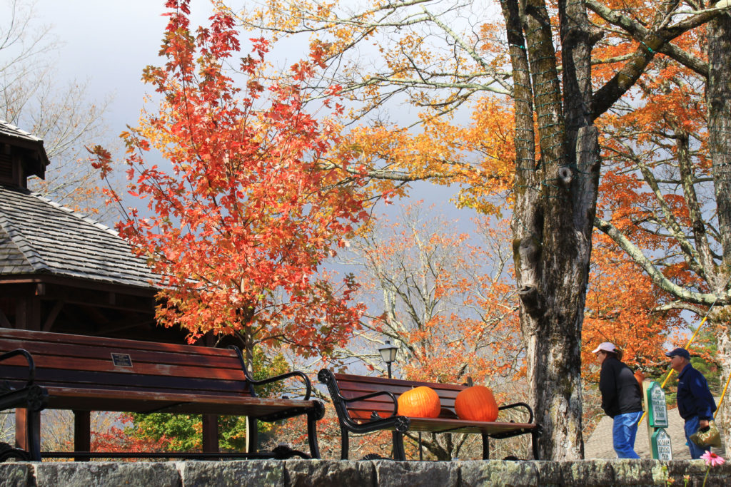 fall in memorial park blowing rock nc foliage color