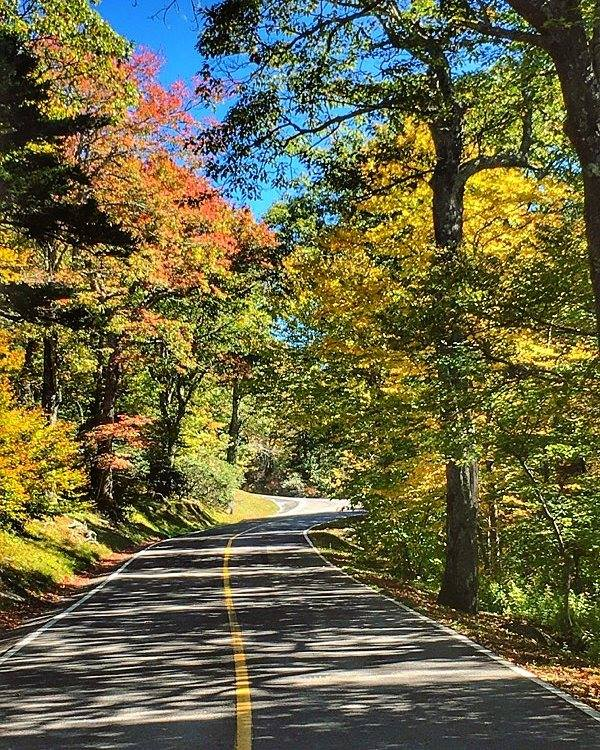 fall color and blue skies near blowing rock nc close to boone