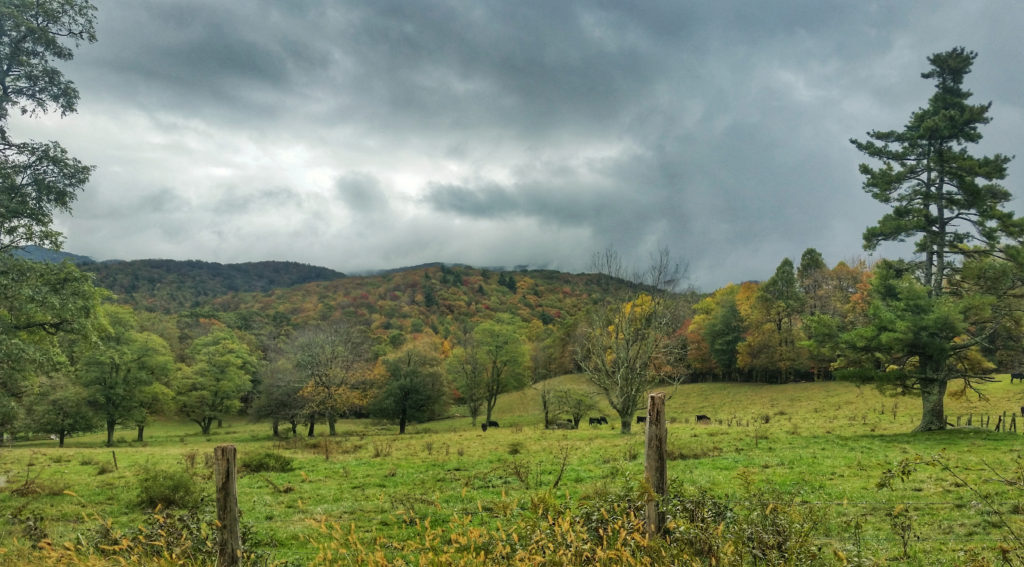early fall color near blowing rock nc