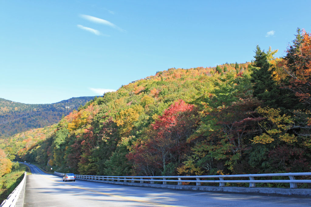 Autumn foliage near milepost 303 on the Blue Ridge Parkway