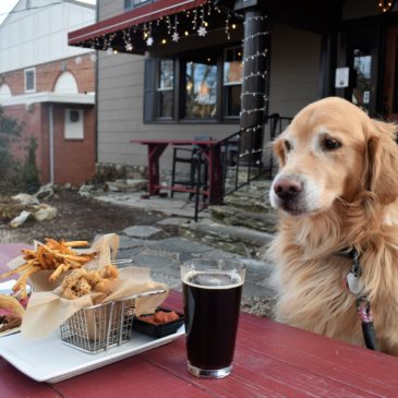 6 Places To Eat With Your Pup