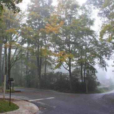 Daily Fall Photo: September 24, 2018
