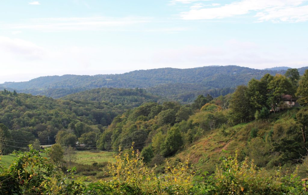 View from Flat Top Road in Blowing Rock