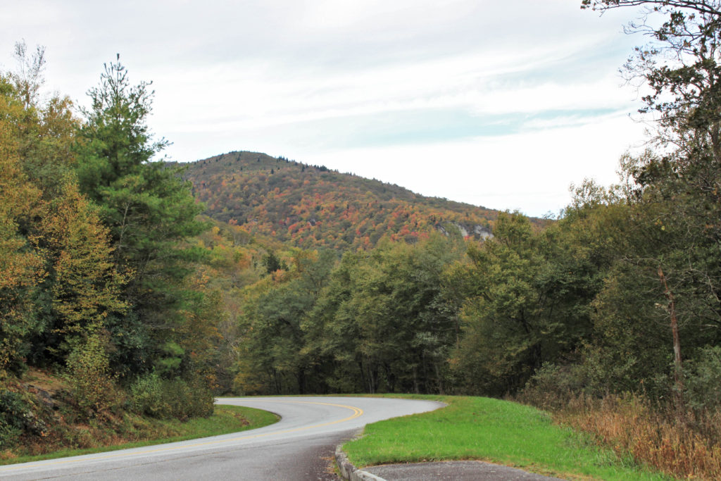 Developing fall color near Blowing Rock NC