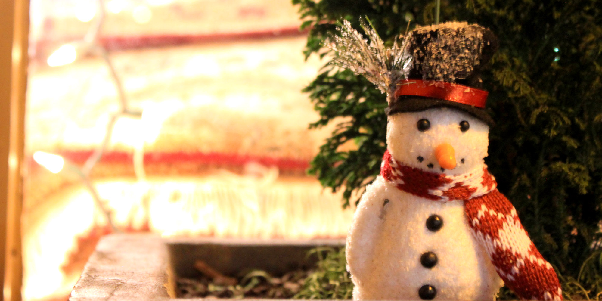 snowman in window box