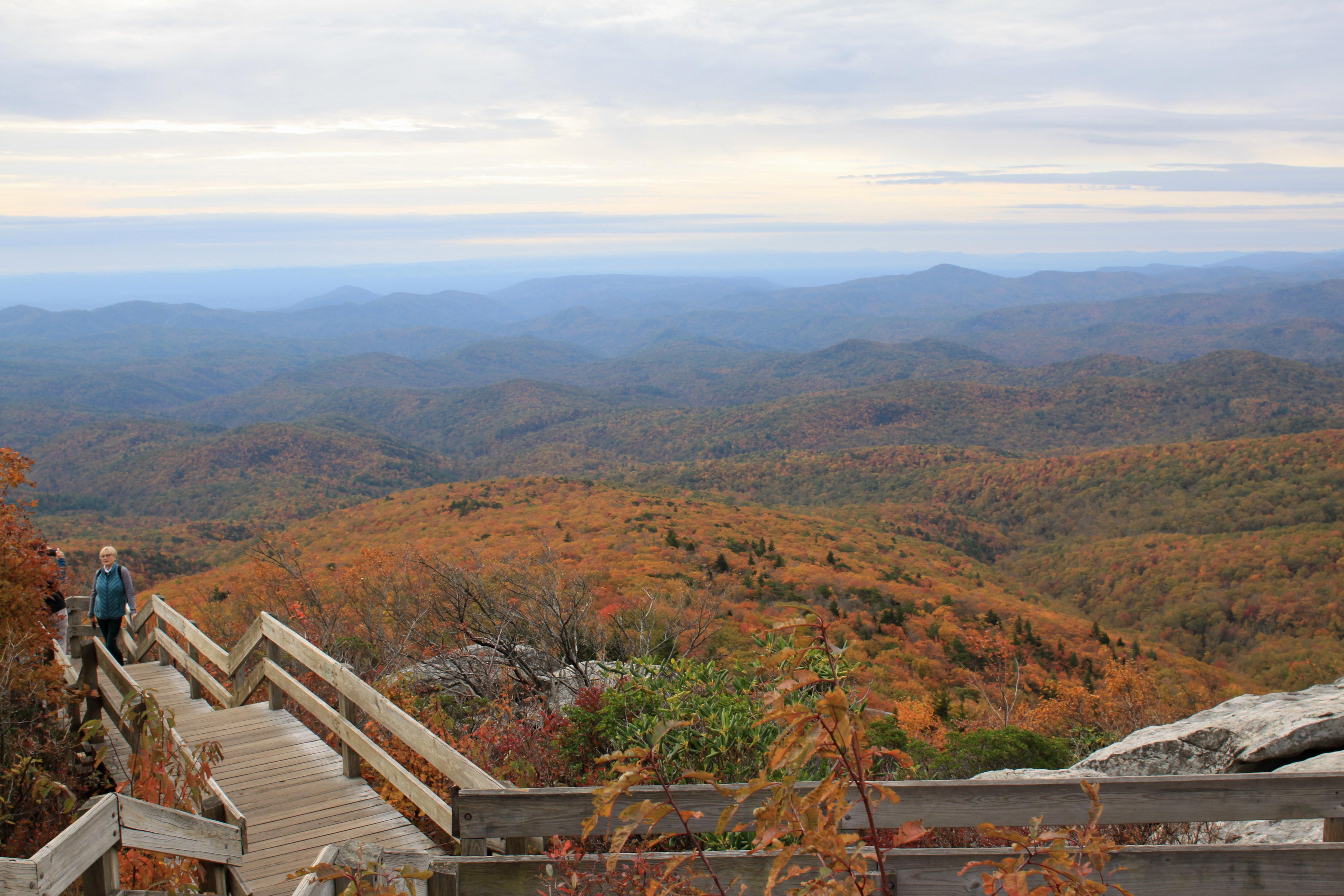Rough Ridge fall