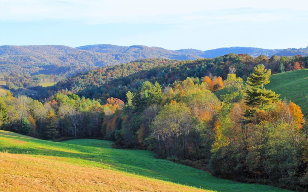 rural fall color near blowing rock