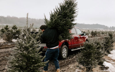 Christmas Tree Package with Holiday Inn Express Blowing Rock