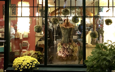 Elevate Your Shopping in Blowing Rock