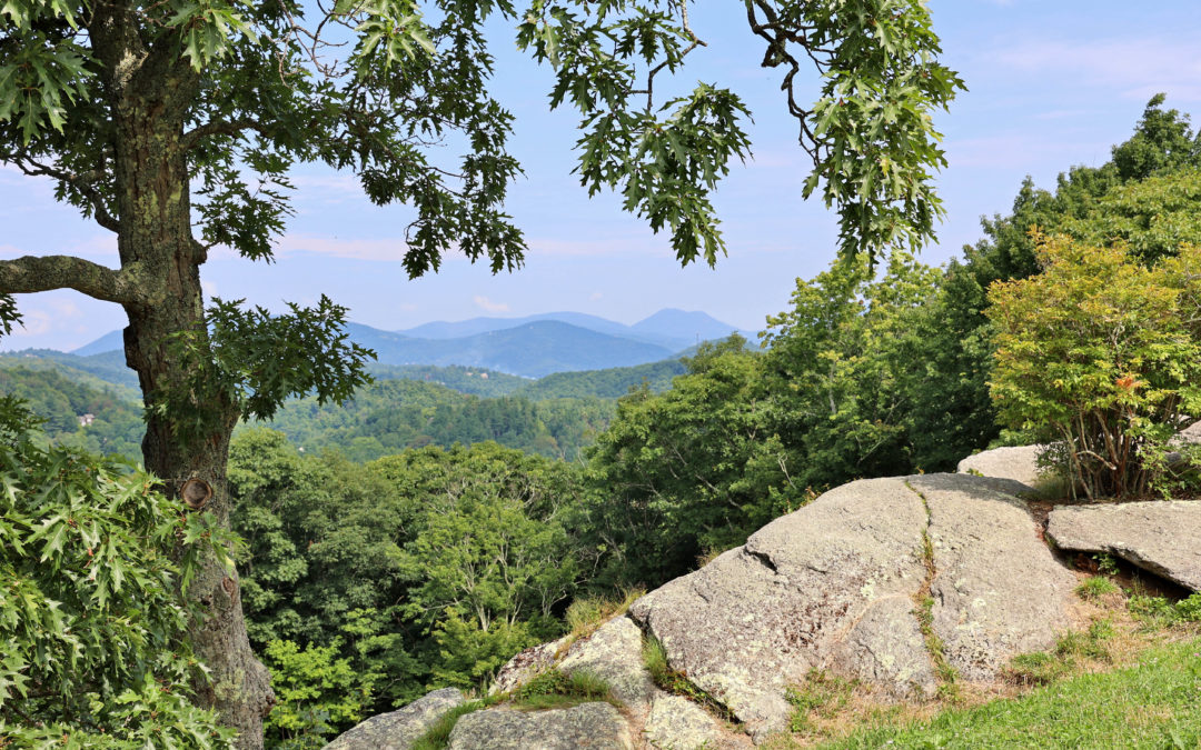 MP 289.5 – Raven Rocks Overlook