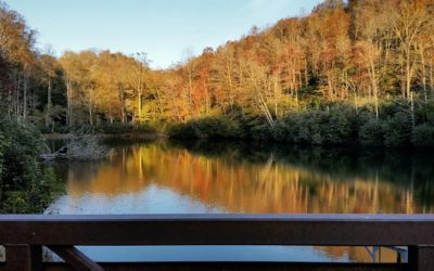 MP 295.9 – Sims Pond Overlook