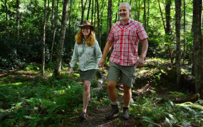MP 296.5 – Boone Fork Trail