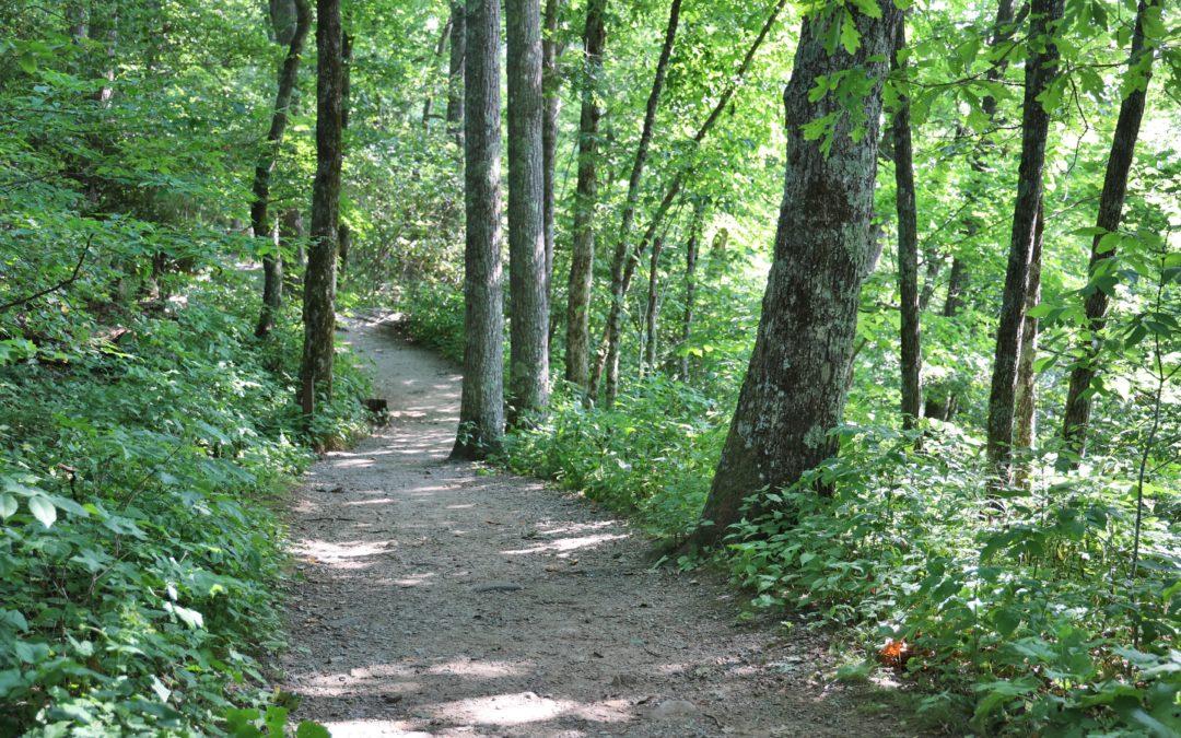 MP 271.9 – Cascades Overlook & Trail