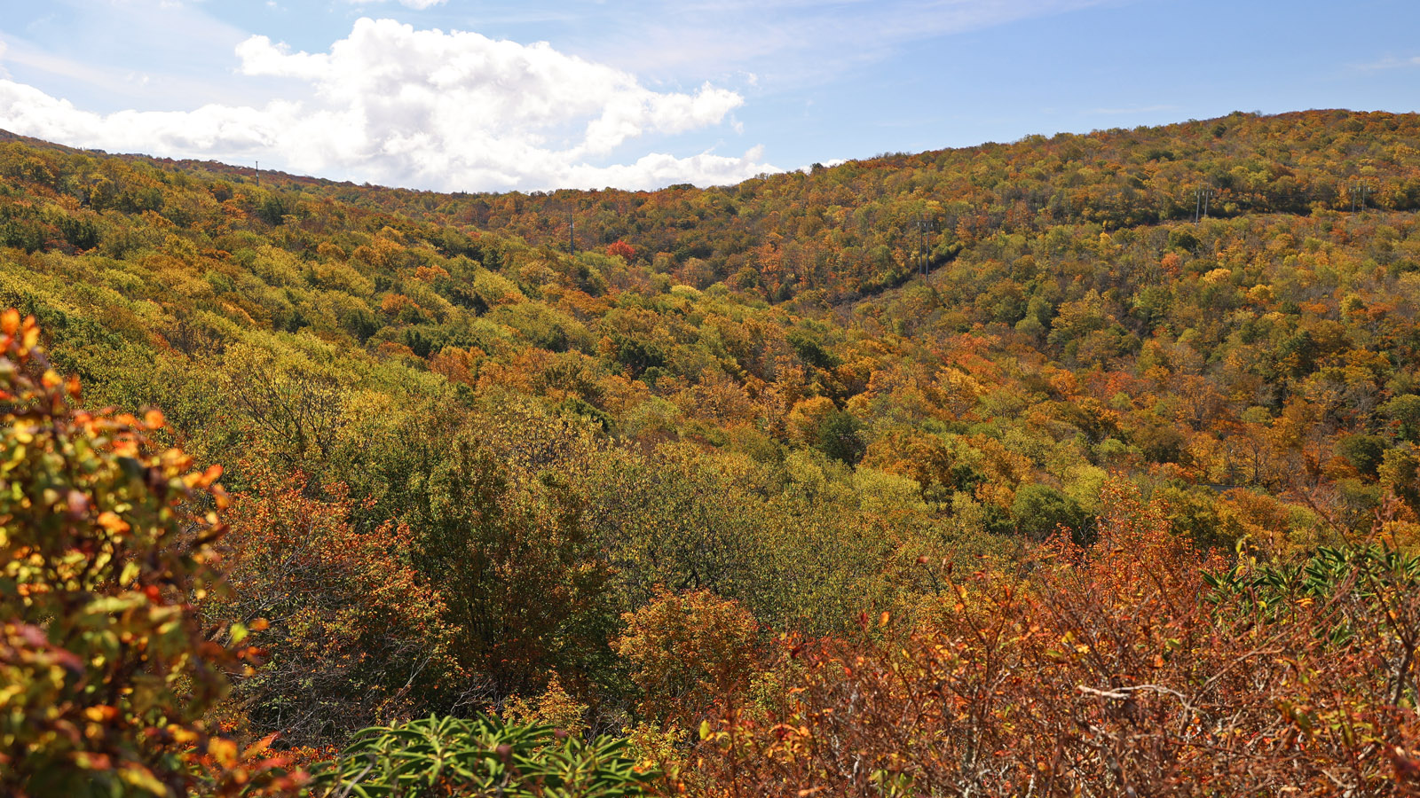 view from sunset park on Beech Mountain