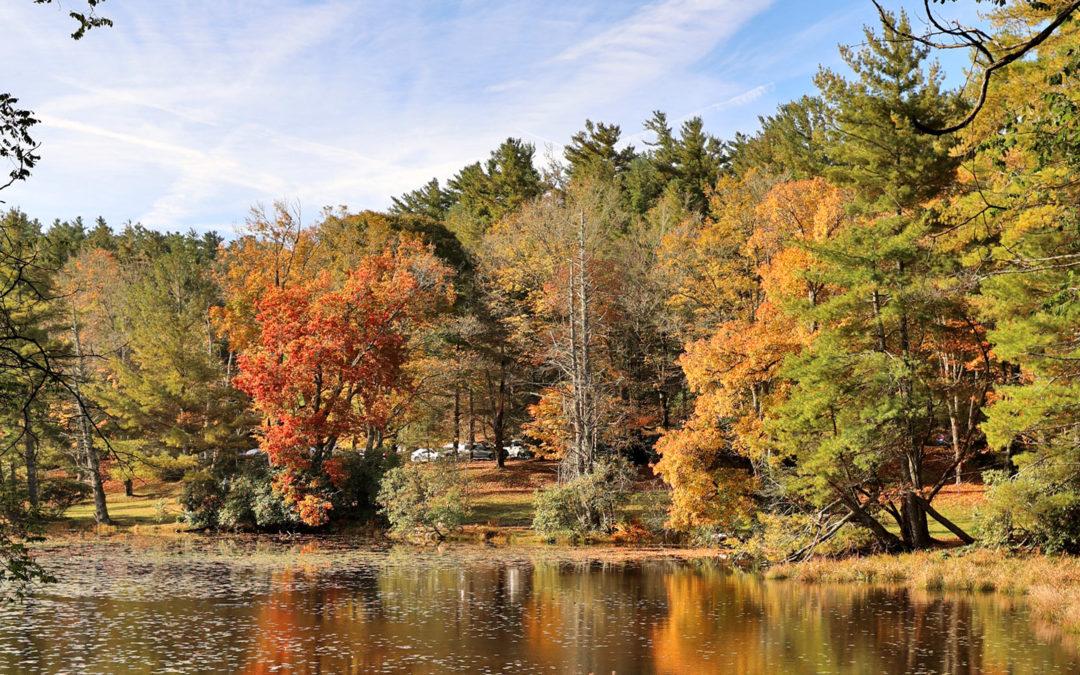 Daily Fall Photo: October 14, 2021