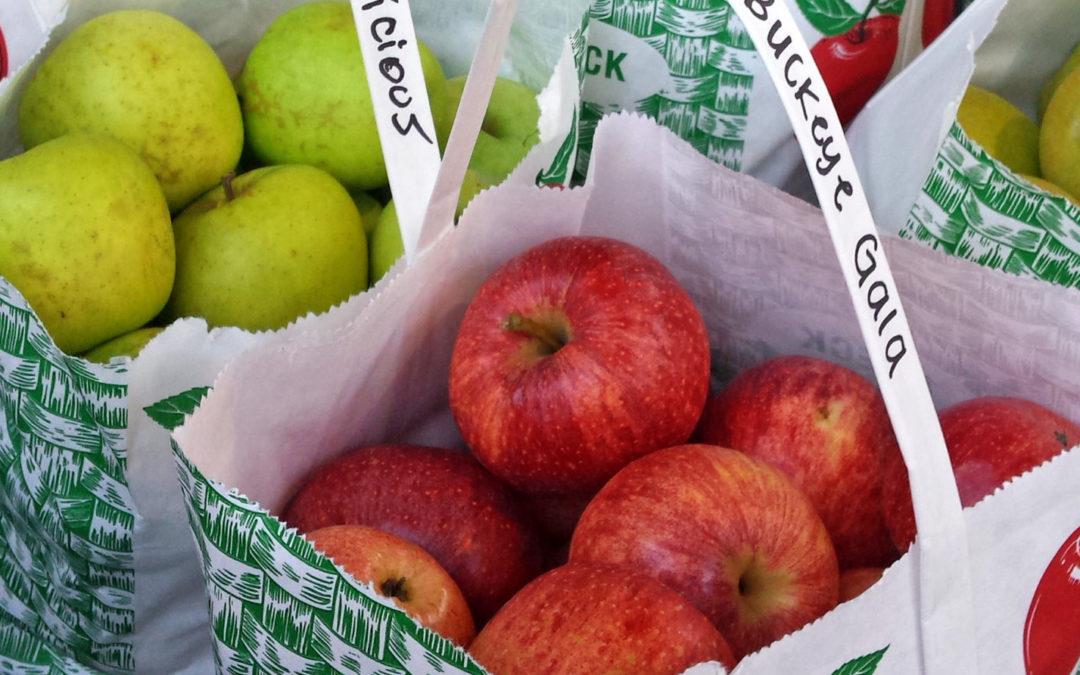 Apples, Mazes, & Farm Fun!